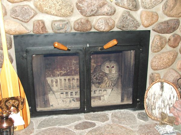 fireplace owl