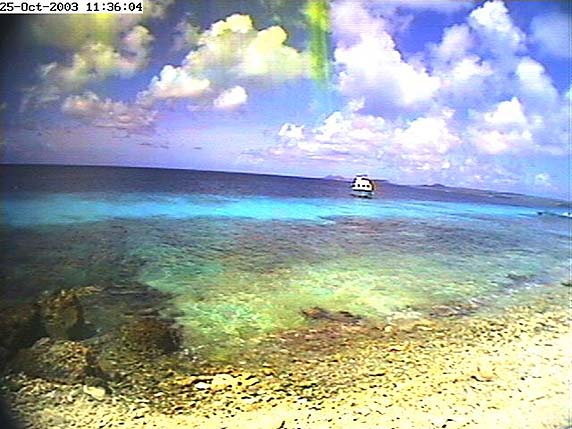 bonaire webcam