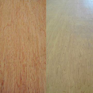 Bintangor_Okoume_Birch_Pine_and_Agathis_Plywood.jpg
